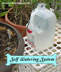 Homemade Automatic Christmas Tree Waterer by Survival Tips For Indoor House Plants While On Vacation Indoor