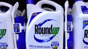 New Court Papers Charge Monsanto Manipulated