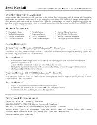Sample Resume For Territory Sales Manager As Well Make