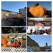 Half Moon Bay Pumpkin Festival Biggest Pumpkin by Hmbpumpkinfest Hashtag On Twitter