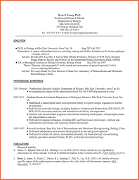 Resume Bio Example Examples Agent Simple Format In Word