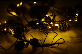 Pine Cone Christmas Tree Lights by String Lights With Pine Cones 39ct Battery Op Warm White 6ft