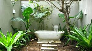 Best Plant For Bathroom by Bamboo Plants In Bathroom Feng Shui Best For Bathrooms Peace Lily