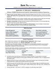 Resume Sample: Experienced It Project Manager Resume Sample ...