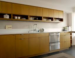 Cozy Kitchen Cabinets With Sink Faucets For Nice Mid Century Modern