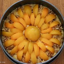 schneller pfirsich sonnenkuchen