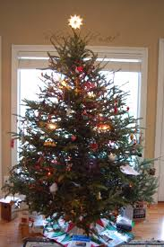 Colorado Springs Christmas Tree Permit 2014 by House Projects A Daily Dose Of Fiber