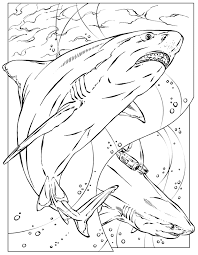Cozy Inspiration Shark Coloring Pages Shark Jaws Coloring Page