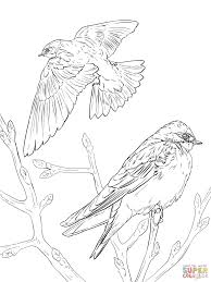 Click The Realistic Tree Swallows Coloring