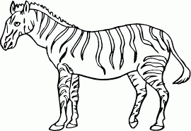 Large Size Of Coloring Pagesstunning Zebra Sheet Cute Page Pages Cool