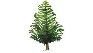 Douglas Fir Artificial Christmas Tree Pine 7 Ft Pre Lit