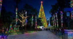 A 60ft Walk Through Tree With 30000 Lights Whats Planned For Bournemouths Christmas Wonderland