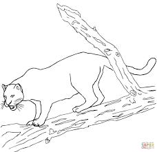 Black Panther Jaguars Coloring Page Printable Download