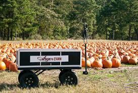 Pumpkin Picking Nj by Trip To Argo Pumpkin Farm Ocean Mental Health Services