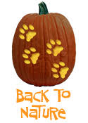 Good Pumpkin Carving Ideas Easy by Over 700 Free Pumpkin Carving Patterns And Stencils