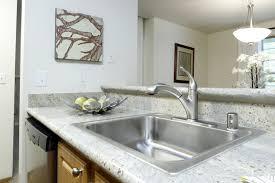 Esi Sinks Kent Wa by Kitchen Sinks Kent Wa Kite Aquatechnics Biz