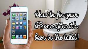 How to fix your iPhone after you drop it in the toilet