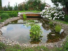 Garden Design: Garden Design With Small Backyard Ponds On ... 67 Cool Backyard Pond Design Ideas Digs Outdoor With Small House And Planning Ergonomic Waterfall Home Garden Landscaping Around A Pond Flow Back To The Ponds And Waterfalls Call For Free Estimate Of Our Back Yard Koi Designs Febbceede Amys Office Large Backyard Ponds Natural Large Wood Dresser No Experience Necessary 9 Steps Tips To Caring The Idea Pinterest Garden Design