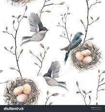 Watercolor Seamless Pattern With Nest, Birds And Tree Twigs ... Texas Backyard Naturalist Butterflies North Potomac Valley Audubon Society Pvas Habitats Bird Wallpapers The Backyard Bedroom Licious House Pool Ideas Best Pools Home Giles Frontier Brisbane Gum Trees At My Place Eucalyptus Major Amazing Most Professors Wife Snowy Owl Shorteared Owl