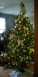 Whoville Christmas Tree Ideas by 103 Best Oh Christmas Tree Images On Pinterest Christmas Tree