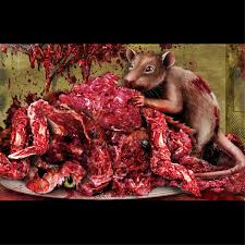Halloween Scene Setters Amazon by Giant Morgue Bloody Wall Roll Horror Csi Scene Setter Decoration