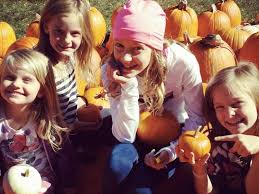 Illinois Pumpkin Patch 2015 by Pumpkin Patch Returns To First United Methodist Church Of Oak Lawn
