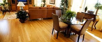 Dining Room Floor Mat