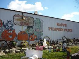 Celebrate Highwood Highwood Packs In The Pumpkins At Annual Fest by Lake County Pumpkin Patches 2016 Little Lake County