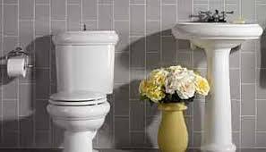 Kohler Alterna Bidet Faucet by Kohler Faucets Sinks U0026 Fixtures Efaucets Com