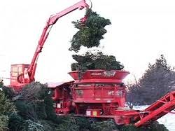 Christmas Tree Hill Shops York Pa by Pennsylvania Where And How To Recycle Your Christmas Tree After