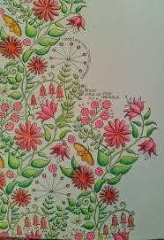 Secret Garden See More SG Floral Design ChameleonColoring BooksFloral