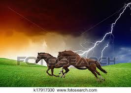 Stock Photography Of Two Horses Lightning Storm K17917330