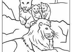 Color The Lion Pride