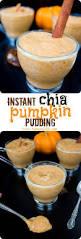 Splenda Easy Pumpkin Pie by Best 25 Pumpkin Pudding Ideas On Pinterest Pumpkin Lasagna