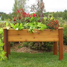 Gronomics Raised Garden Bed by Shop Gronomics Safe Stain Red Cedar Raised Planter Box At Lowes Com