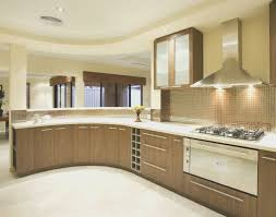Kitchen Creative Slab Door Cabinets Home Design Very Nice Lovely At Interior Decorating Modern Blue Ideas Exceptional Horrifying