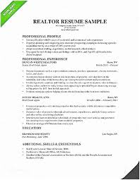 Realtor Resume Examples Fine For Clients Mold Example Of Real
