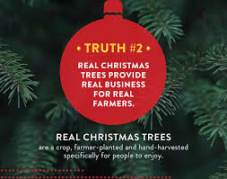 Christmas Tree Farm Lincoln Nebraska by Frosty U0027s Pines Christmas Trees Home Facebook