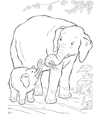 Baby Elephant Animal Coloring Pages