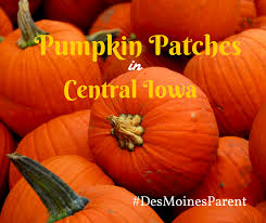 Best Pumpkin Patch Des Moines by Best Pumpkin Patches In Des Moines Iowa The Year Book Of