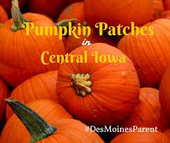 Best Pumpkin Patch Des Moines best pumpkin patches in des moines iowa the year book of