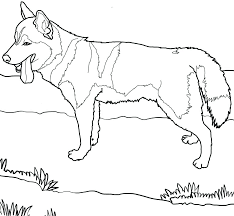 Coloring Pages Free Online Dogs Animal Sheets Printable Girls Boys Dog Pictures Of