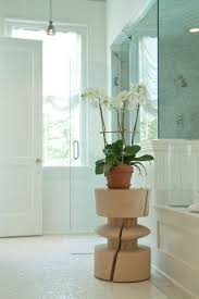 Plants In Bathrooms Ideas by 96 Best Bathroom Plants Images On Pinterest Bathroom Plants