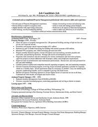Describe Your Computer Skills Resume Sample Delighted Resume ... 3 Letter Words Adjectives Awesome Descriptive For Resume New 30 Unique Self College Search Worksheet Fresh 15 Best For Printable Worksheets And Acvities Resume Adjective Words Erhasamayolvercom Revised Cover Pdf Or Word Professional Phrases Samples Positive Joriso Nl Your Action Skill 246213 Data Analyst Job Description Sample Accounting Entry Level Valid Good Examples Of Descriptive