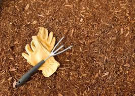 What Type of Mulch is Right for You