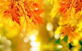 936 Fall HD Wallpapers