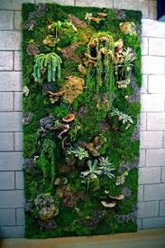 Succulent Vertical Living Wall Art Garden Green Leaves Flower Blossom Outdoor Design Handmade Nice Decoration