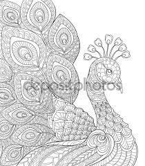 Displaying Peacock Coloring Page