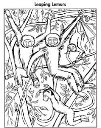 Welcome To Dover Publications Animal Hidden Pictures