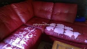 Badcock Living Room Sets by Badcock Home Furniture Sofa Review From Bainbridge Georgia Mar